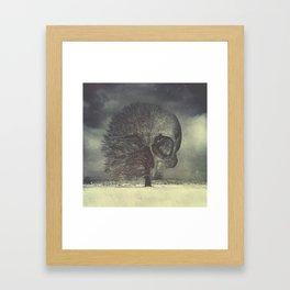 Life Cycle Framed Art Print