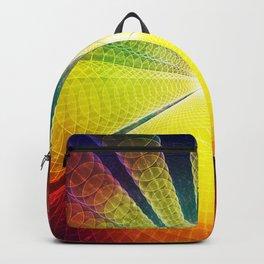 Cosmic Rays Backpack