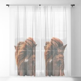 Horse Head Sheer Curtain
