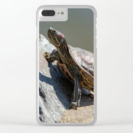 Red-Eared Slider Turtle Clear iPhone Case