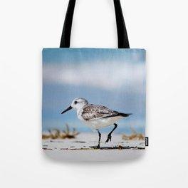 Sandy Stroll Tote Bag