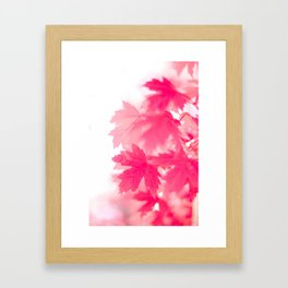pink on white Framed Art Print