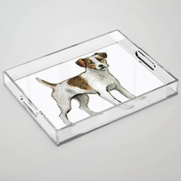 Jack Russell Terrier Acrylic Tray