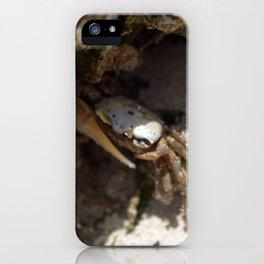 Crab No.2 iPhone Case