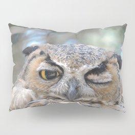 Owl Wink Pillow Sham