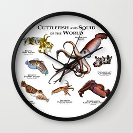 Cuttlefish and Squid of the World Wall Clock