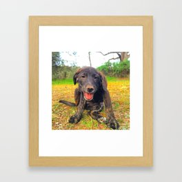 Precious Puppy Framed Art Print