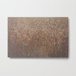 Fields of Gold Metal Print