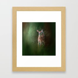 Woodsy Summer Fawn Framed Art Print