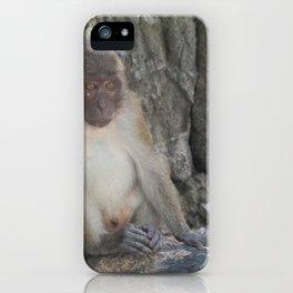 Professional Thailand Photograph iPhone Case