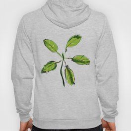New Growth Hoody
