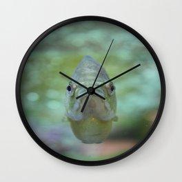 Happy Fish Wall Clock