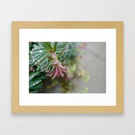 Pastels Floral Greenery Framed Art Print
