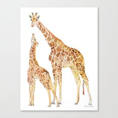 Mother and Baby Giraffes Canvas Print