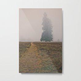 Hiking in the Fog Metal Print