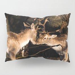 Deer Love Pillow Sham