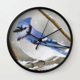 Blue Jay in Winter Wall Clock