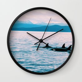 Orcas Swimming Through the Evening Wall Clock