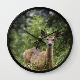 Wandering Deer Wall Clock