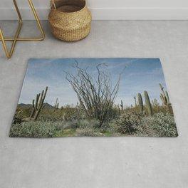 Ocotillo Desert Rug