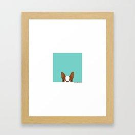 Red Boston Terrier Framed Art Print