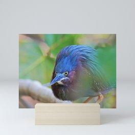 The Green Heron at Ding II Mini Art Print