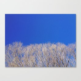 Tree & Sky, Wayside, Mississippi (Color) Canvas Print