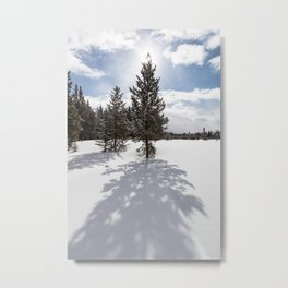 Gardners Hole, Yellowstone National Park Metal Print