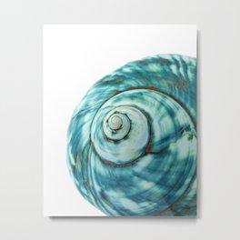 Blue Seashell Beach Photo Metal Print