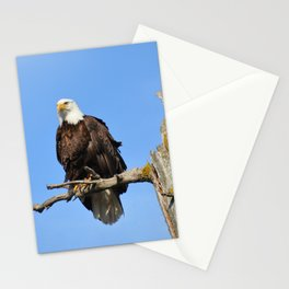 Patiently Waiting! Stationery Cards
