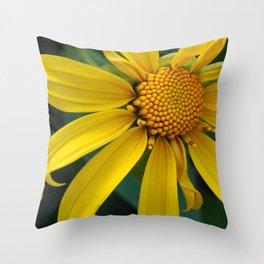 Lone Sunshine Throw Pillow
