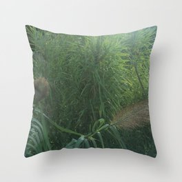Morning Dew On Cattails Throw Pillow