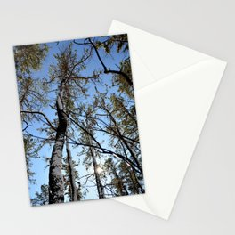 Pine Barrons Stationery Cards