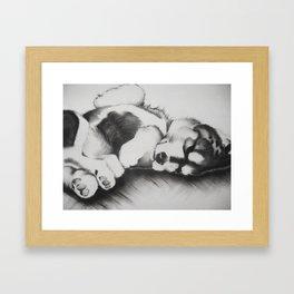 Upside down pup Framed Art Print