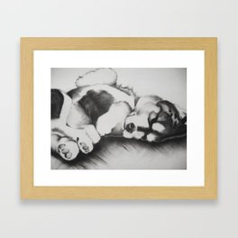 Upside down pup Framed Art Print