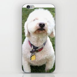 Sniffer iPhone Skin