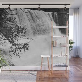 Gooseberry in Black and White Wall Mural