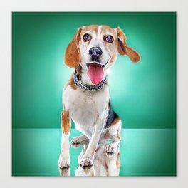 Super Pets Series 1 - Super Buckley 2 Canvas Print