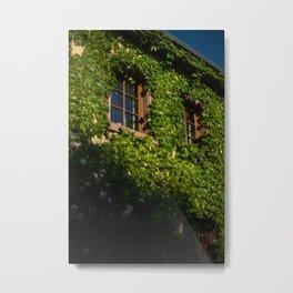 Windows and Vines Metal Print