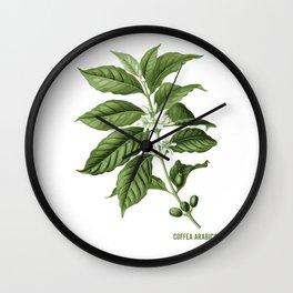 Coffea Arabica Plant Caffeine Lover Wall Clock