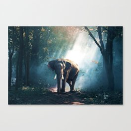 Walking with Elephant Canvas Print