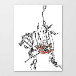 rowan branch with dried leaves and berries Canvas Print
