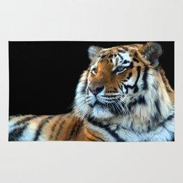 Sumatran Tiger - Panthera Tigris Sumatrae Rug