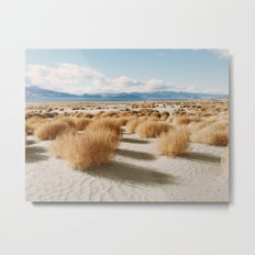 Paiute Land Metal Print