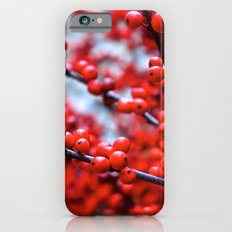 Festive Berries 2 iPhone 6s Slim Case