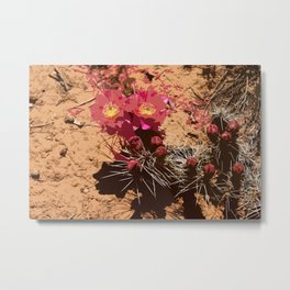 Red Cacti Abstract Metal Print
