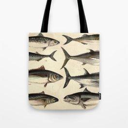 Vintage Illustration of Tunas, Mackerels & Bonitas Tote Bag