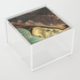 Universe of Souls - Panel 3 Acrylic Box