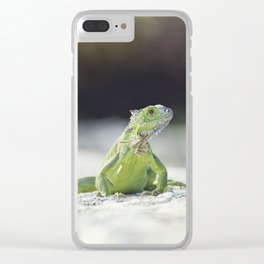 Green Iguana sunning on a stone wall Clear iPhone Case