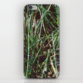 Shoots iPhone Skin